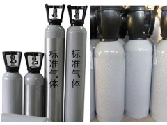 HH-H2S-8L 食品級二氧化碳中的硫化物標氣