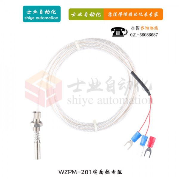 WZPM-201 端面铂热电阻