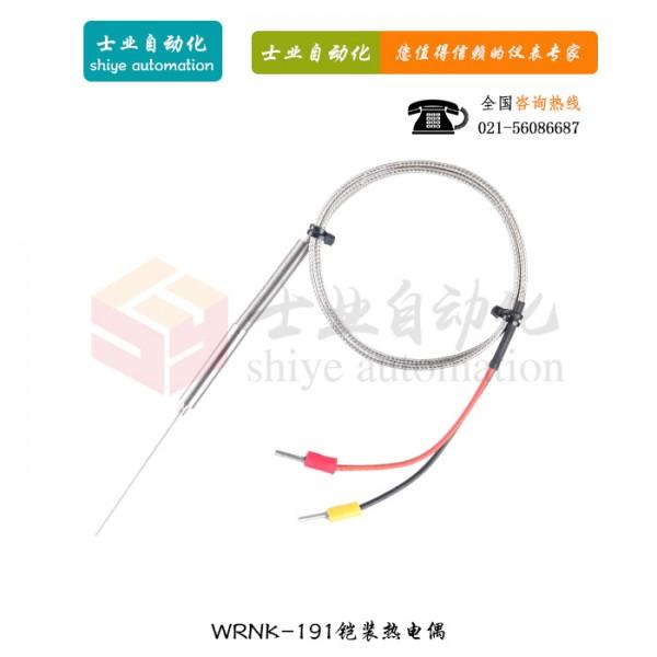 WRNK-191 铠装式热电偶