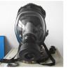 型號:NX15-HSGF500 防毒面具/型呼吸防護器(中西器材)