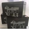 LEOCH蓄电池DJW12-12图片报价