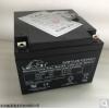LEOCH蓄电池DJW12-18图片报价