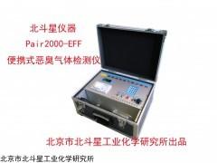 pAir2000-EFF系列 厨余垃圾恶臭气体检测仪
