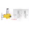 型号:JHS1-DZ-ZR225L/3.2 柱塞式计量泵