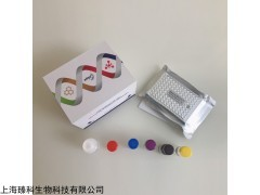 植物原卟啉原Ⅸ氧化酶(PPOX)elisa试剂盒