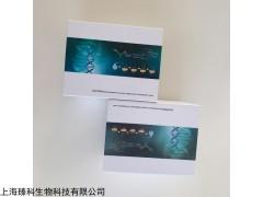 大鼠游离甲状腺素(FT4)elisa试剂盒