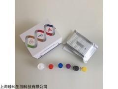 小鼠胰岛素样生长因子结合蛋白2elisa试剂盒