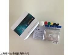 小鼠抗血小板抗体IgM(PA-IgM)检测试剂盒