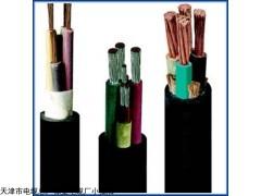 天津VV22铠装电力电缆