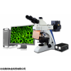 包头 结核杆菌检测荧光显微镜 BK-FL