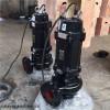 QW 2極2840r高轉速鑄鐵污水潛水泵高泵效全球質保