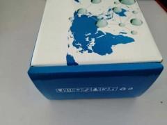 10次 现HL10039MTT比色法测定试剂盒