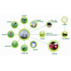 OSEN-QX 茶叶种植生产过程中土壤质量气象环境检测设备