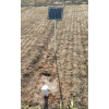 BYQL—DG03 智能无线土壤墒情测量仪