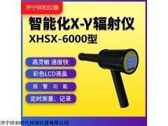 XHSX6000 輻射劑量率儀