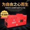 190柴油发电机带电焊机TO190A户外应急