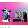 HG200-0C 透反射三目正置式显微镜