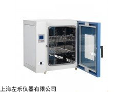 DHG-924 台式鼓风干燥箱300℃