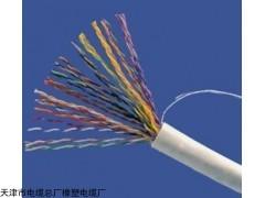电子计算机电缆djyvp-2*2*1.0价格