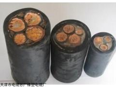 单芯95平方UGF矿用高压电缆