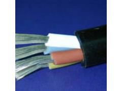 重型橡套电缆 2*10+1*6铜芯软电缆