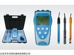 TW-6196便携式水中综合分析仪