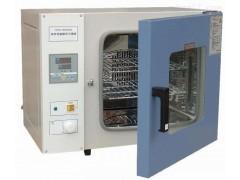 上海电热恒温培养箱厂家