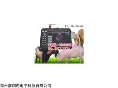 便携式猪用B超测孕仪母猪怀孕诊断仪多少钱