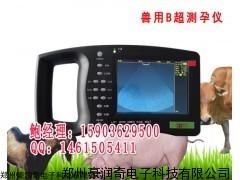 便携式猪用B超背标眼肌测量专用猪怀孕B超机
