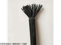 钢丝铠装屏蔽电缆