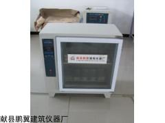 ZFX-10A智能砖瓦泛霜箱