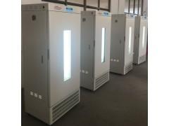 植物强光生长恒温箱HYM-250-G光照培养箱