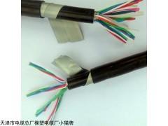 天津HYV20对通讯电缆