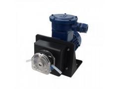 FG600S-A3 油漆涂料流量泵 交流防爆电机型蠕动泵