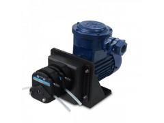 FG601S-A3 交流防爆电机型蠕动泵15#双通道流量泵