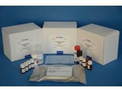 48t/96t 猴子白介素2受体(IL-2R)ELISA试剂盒