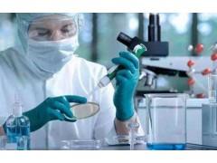 48t/96t 人雌二醇(E2)ELISA试剂盒使用说明书
