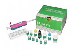 48t/96t 牛免疫球蛋白G(IgG)ELISA试剂盒