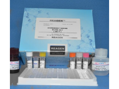48t/96t 兔子肾上腺髓质素(ADM)ELISA试剂盒操作说明书