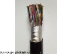500对ZR-HYA23阻燃通信电缆系列规格