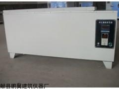 ZSA-5A砖瓦爆裂蒸煮箱鹏翼厂家