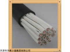 贵阳CKEFRP船用控制电缆