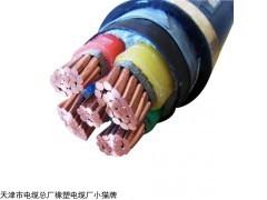 天津阻燃电力电缆MVV