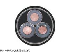 铠装高压电力电缆YJV22-8.7/15KV