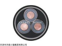 扬州YJV22-高压铠装电力电缆