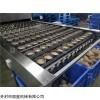 丽星即食粉丝生产线采用铺浆蒸熟工艺技术
