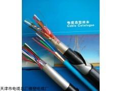 DJYPVP22计算机控制电缆分屏总屏电缆
