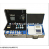 GR/SJ10SS 北京食用合成色素检测仪