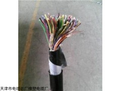 SBVV 程控交換局用電纜