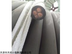 YZW3*10+1*6mm耐油中型橡套电缆